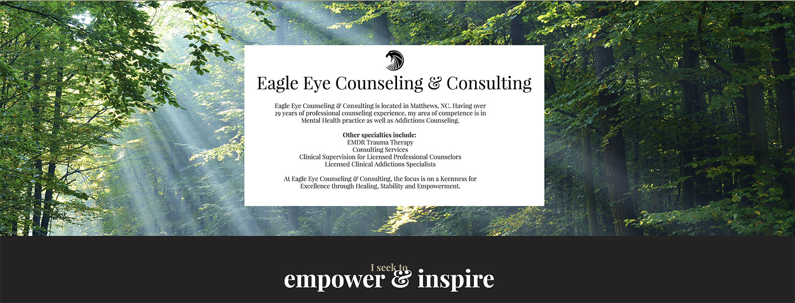Eagle Eye Counseling Website | AdChix Website and Graphic Design